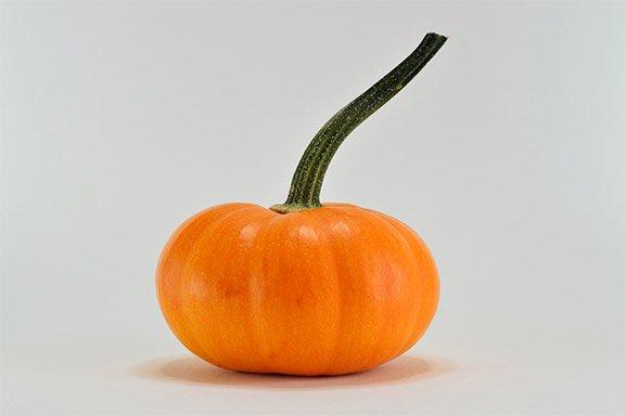 silicon-pumpkin.jpg